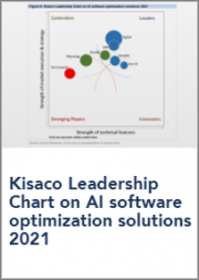 Kisaco Leadership Chart on AI Software Optimization Solutions 2021