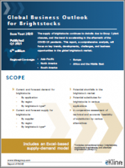 The Global Business Outlook for Brightstocks
