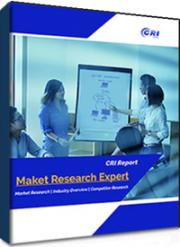 Investigation Report on China's Moxifloxacin Market 2021-2025