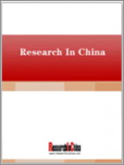 China Automotive Vision Industry Report, 2021