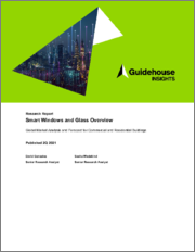 Smart Windows and Glass Overview: Global Market Analysis and Forecast for Commercial Buildings