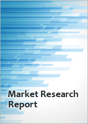 Chromium - Outlook to 2031, 17th Edition