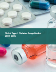 Global Type 1 Diabetes Drugs Market 2021-2025