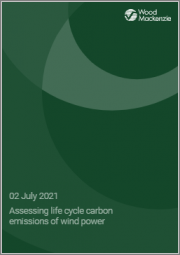 Assessing Life Cycle Carbon Emissions of Wind Power