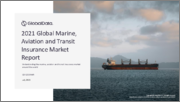 Global Marine, Aviation and Transit Insurance Market to 2025 - Key Business Lines, Trends, Drivers, Challenges, Regulatory Overview and Developments (Updated with Impact of COVID-19)
