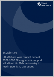 US Offshore Wind Market Outlook 2021-2030: Strong Federal Support will Allow US Offshore Industry to Reach Biden's 30 GW Target