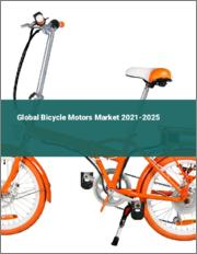 Global Bicycle Motors Market 2021-2025