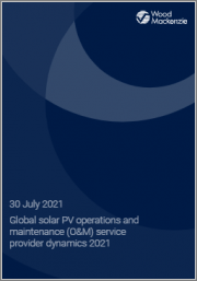Global Solar PV Operations and Maintenance (O&M) Service Provider Dynamics 2021