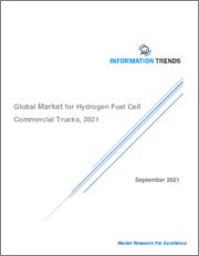 Global Market for Hydrogen Fuel Cell Commercial Trucks, 2021