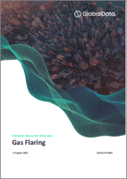 Gas Flaring - Thematic Research