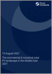The Commercial & Industrial Solar PV Landscape in the Middle East 2021