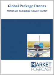 Global Package Drones - Market and Technology Forecast to 2029: Market Forecasts by Region, Type, Weight, End User, Country Analysis, Market and Technologies Overview, Market Analysis, Scenario Forecasts, and Leading Companies