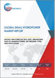 Global Small Hydropower Market Report History And Forecast 2016-2027