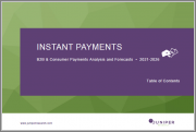 Instant Payments: B2B & Consumer Payments Analysis and Forecasts 2021-2026