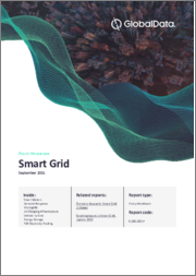 Smart Grid Policy Handbook 2021