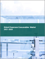 Global Cleanroom Consumables Market 2021-2025