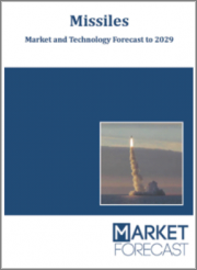 Missiles - Market and Technology Forecast to 2029: Market Forecasts by Region, Technology, System, Platform, Component, Guidance System, End-User, Market & Technology Overview, Opportunity & Scenario Analysis, and Leading Company Profiles