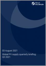 Global PV Supply Quarterly Briefing: Q3 2021