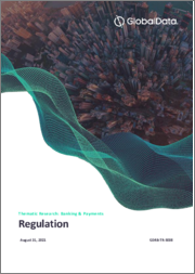 Regulation in Banking and Payment Industry - Thematic Research