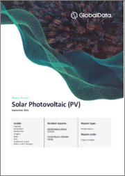 Global Solar Photovoltaic (PV) Market, Update 2021 - Market Size, Market Share, Major Trends, and Key Country Analysis to 2030