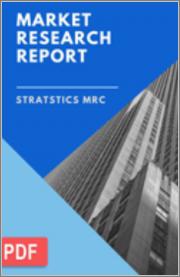 Mesoporous Silica - Global Market Outlook (2020-2028)