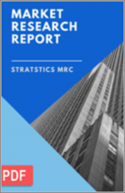 Chlorotoluene - Global Market Outlook (2020 - 2028)