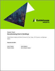 Decarbonizing Heat in Buildings: Global Market Analysis and Market Forecast for Heat Pumps, VRF Systems, and Hydrogen Boilers