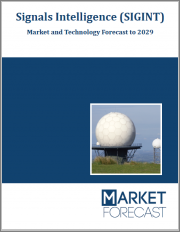 Signals Intelligence (SIGINT) - Market and Technology Forecast to 2029: Market Forecasts by Region, Type, System Element, Platform, Component, Market & Technology Overview, Country, Scenario & Opportunity Analysis, and Leading Company Profiles