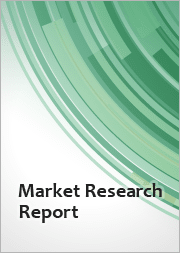 Global Connected Home Security System Market 2021-2025