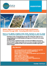 Global Energy Forecasts: EnerFuture