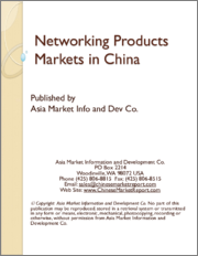 Networking Products Markets in China