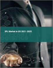 3PL Market in the US 2016-2020