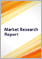 Internet of Things (IoT) in Industry Verticals: IoT in Major Sectors and Outlook for Managed Services and Data Services 2017 - 2022