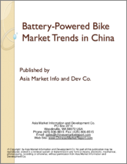 Battery-Powered Bike Market Trends in China