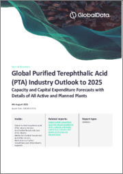 Global Purified Terephthalic Acid (PTA) Industry Outlook to 2025 - Capacity and Capital Expenditure Forecasts with Details of All Active and Planned Plants