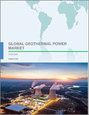 Geothermal Power Market by Type and Geography - Forecast and Analysis 2020-2024