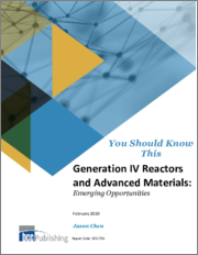 Generation IV Reactors and Advanced Materials: Emerging Opportunities