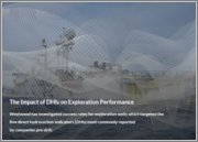 The Impact of DHIs on Exploration Performance