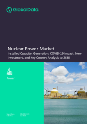 Nuclear Power Market - Installed Capacity, Generation, COVID-19 Impact, New Investment, and Key Country Analysis to 2030