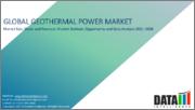 Global Geothermal Power Market - 2021-2028