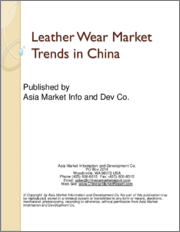 Leather Wear Market Trends in China