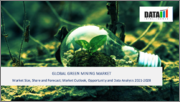 Global Green Mining Market - 2021-2028