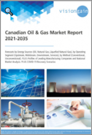 Canadian Oil & Gas Market Report 2021-2035: Forecasts by Energy Sources (Oil, Natural Gas, Liquefied Natural Gas), by Operating Segment, by Method, Profiles of Leading Manufacturing Companies, National Market Analysis, COVID-19 Recovery Scenarios