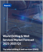 World Drilling & Well Services Market Forecast 2021-2025 Q1
